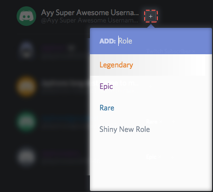 How do I set up Permissions? – Discord